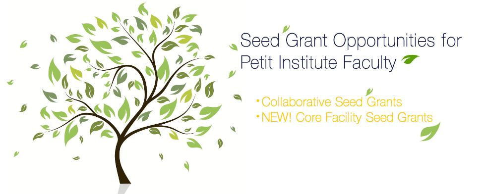 Petit Institute Seed Grants