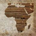 sites/default/files/styles/125px_square/public/InTheNews/africa.jpg
