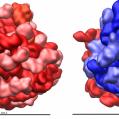 sites/default/files/styles/125px_square/public/InTheNews/ribosome.png