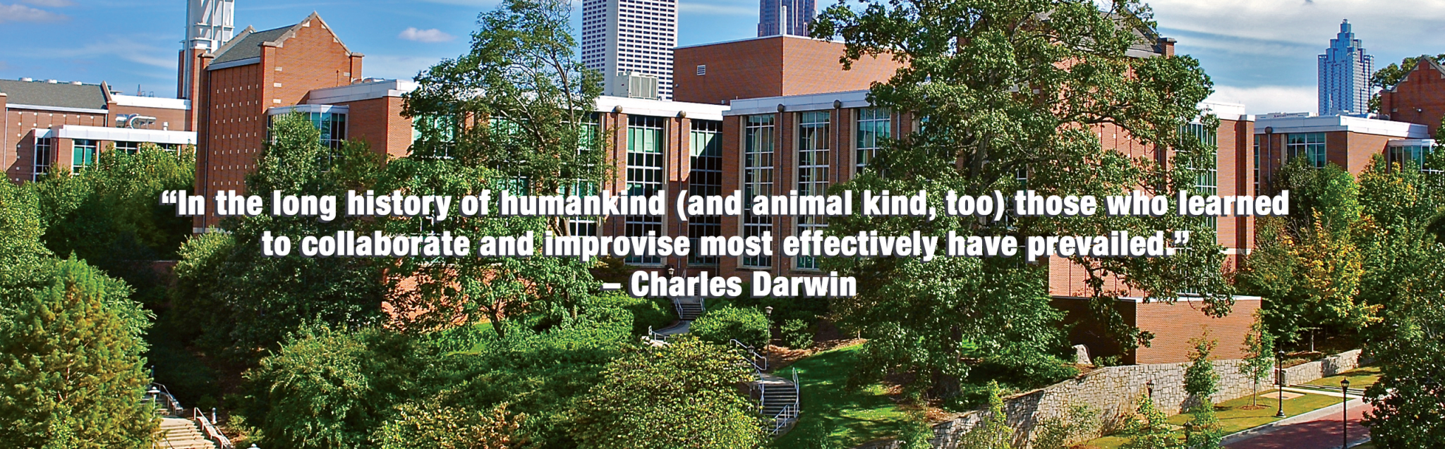 Petit Building and Darwin Quote